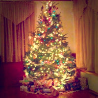 A Christmas Recap, From Beverly Hills to Halifax, MA