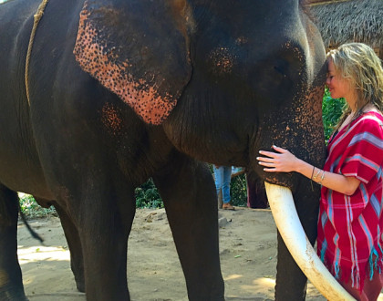 The Best Day of My Life: Patara Elephant Farm in Thailand