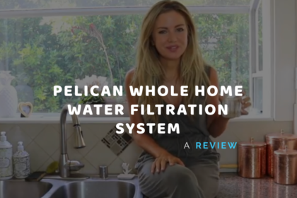 whole home water filtration system best
