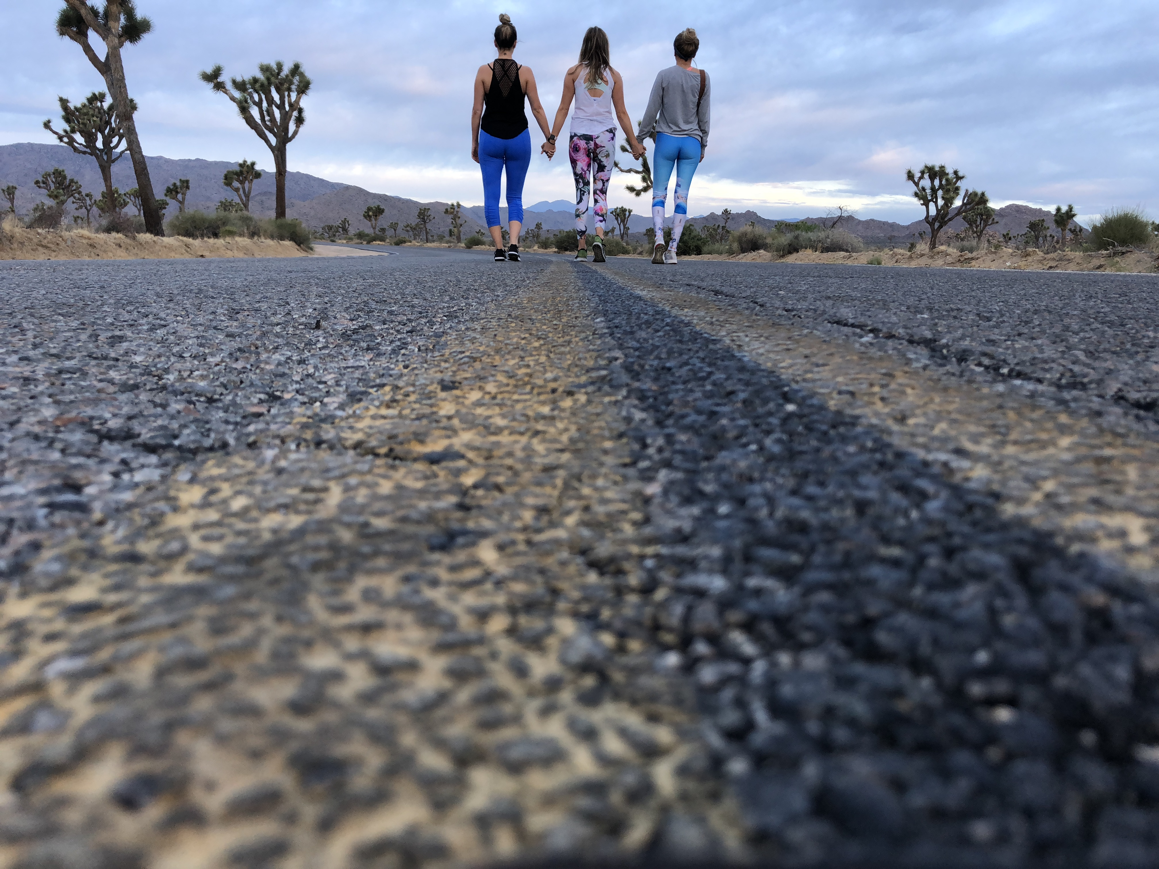 which entrance in Joshua tree to stay near