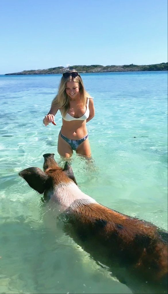 feeding swimming pigs exuma Bahamas boat day tour cheap