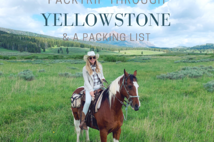 Horseback & Camp through Yellowstone's Back Country