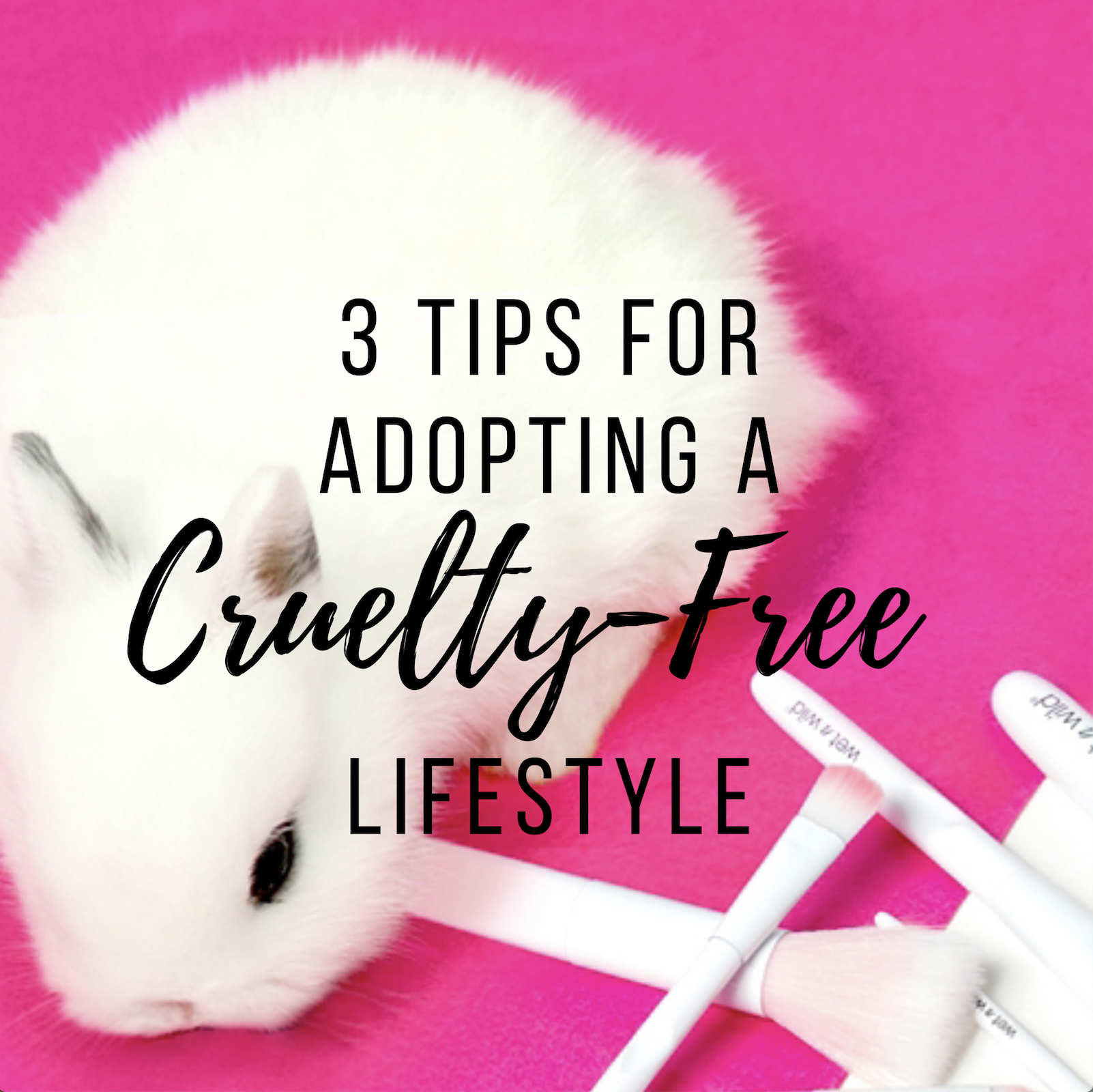 3 Tips for Adopting a Cruelty-Free Lifestyle