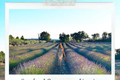 Provence itinerary