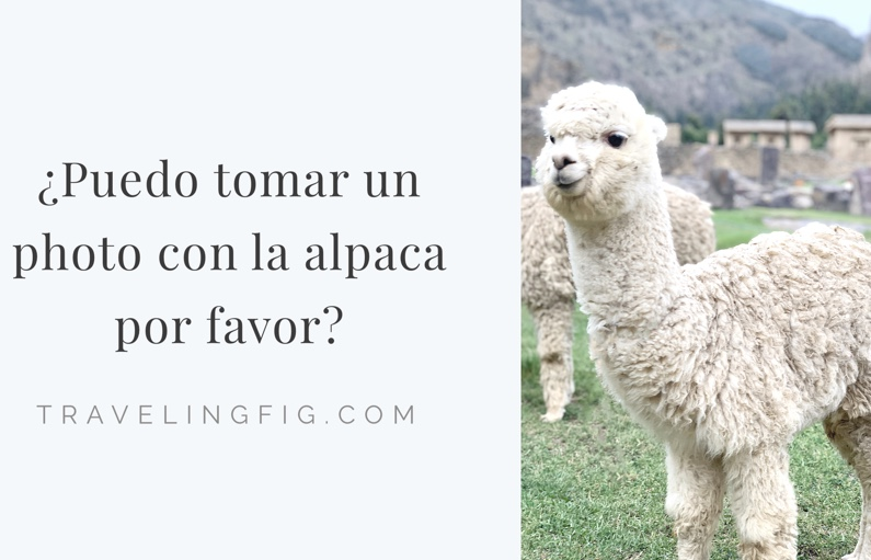 most important phrase to learn traveling in peru spanish