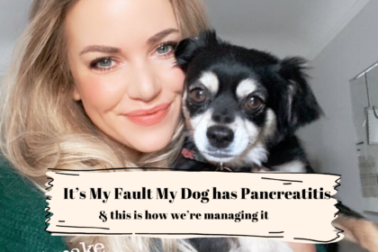 Why I'm to Blame for my Dog's Pancreatitis (& What Now)